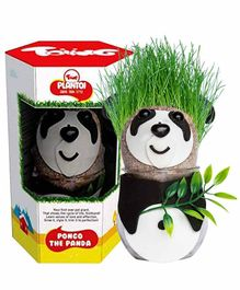 Toiing PlanToi Pongo The Panda - Black White & Green