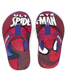 Spider Man Printed Flip Flops - Red Blue