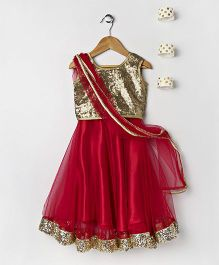Pixie Dust Netted Lehenga With Shimmery Choli - Red & Gold