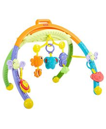 Fisher Price Folding Activity Gym - Multicolour