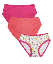 Claesens Holland Panty Pack Of 3 - Multicolor