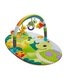 Infantino Explore & Store Activity Gym Turtle - Green