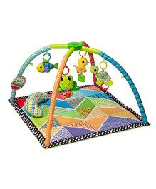 Infantino Pond Pals Twist And Fold Play Gym - Multi Color