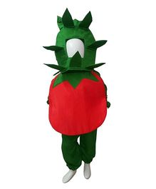 BookMyCostume Tomato Vegetable  Fancy Dress Costume - Red & Green