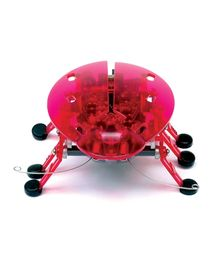 Hexbug Original - Pink