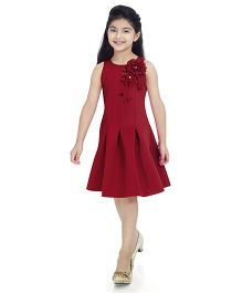Tiny Baby Flower Applique Pleated Dress - Maroon