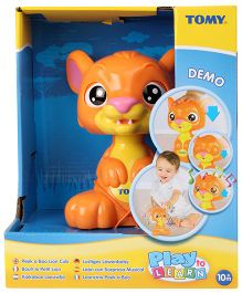 Tomy Funskool Peek Boo Lion Cub - Orange