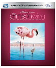 Disney - Crimson Wings Mystery of the Flamingos