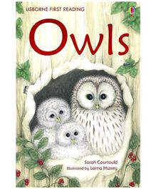 Usborne - Owls Book