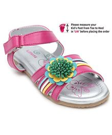 Kittens Pink Butterfly Print Baby Sandal - Flower Applique