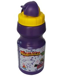 Madagascar Water Bottle 530 ml