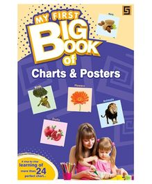 Golden Sapphire My First Big Book of Charts And Posters - English