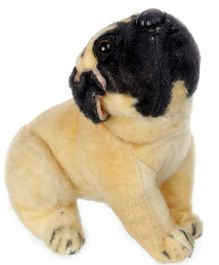 Tickles Pug Dog Soft Toy - Height 21 cm