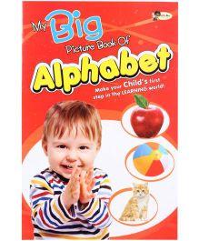Quixot My Big Picture Book Of Alphabet - English
