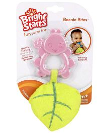Bright Starts Terry Teether With PEP - Pink And Green