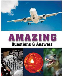 Amazing Questions & Answers - English
