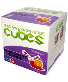 Macaw Phonics Cubes - Consonant Blends