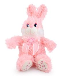 Play N Pets Rabbit Soft Toy - 30 cm