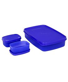 Signoraware Compact Lunch Box Violet - 850 ml
