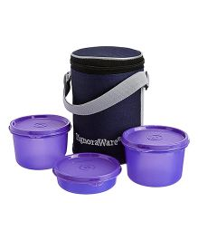 Executive Medium Lunch Box With Bag Violet - Height 15cm
