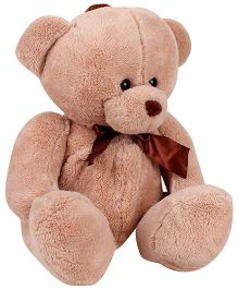 Tickles Teddy Bear Plush Bag Brown - 13 Inches