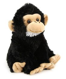 Wild Republic CK Baby Chimpanzee Soft Toy Black - Height 12 Inch
