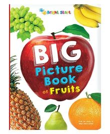 Big Picture Book Of Fruits - English