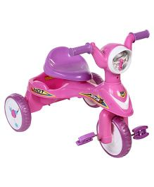 Baby Tricycle With Rear Basket - Pink Purple