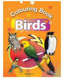 Colouring Book Birds - English