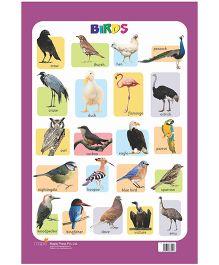 Charts Birds - English