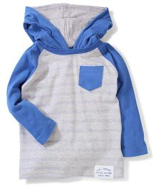Pumpkin Patch Raglan Sleeves Hooded T-Shirt - Grey And Blue