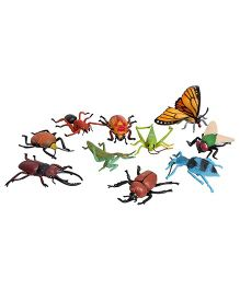 Wild Republic Insect Pack Of 10 - Multi Color