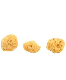 Mothercare Natural Sponge Pack Of 3 - Yellow