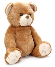 Wild Republic Teddy Bear - Brown