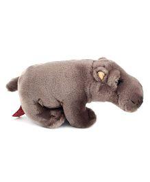 Hamleys Baby Hippo Soft Toy