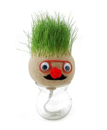 EZ Life DIY Grass Head Plant - Peach