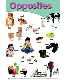 Sterling - Opposites Early Learning Posters