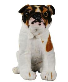 O Teddy Pug Dog - White