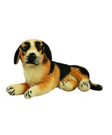 O Teddy Beagle Dog Soft Toy