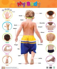 My Body Chart - English