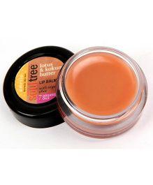 SoulTree Lotus & Kokum Butter Lip Balm - 6 gm