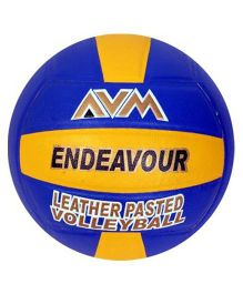 AVM Endeavour Volleyball - Size 5
