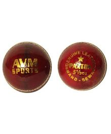 AVM Paxton Leather Cricket Ball Pack of 2 - Red