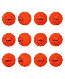 AVM Windball Cricket Ball Pack Of 12 - Red