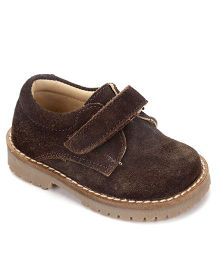 Teddy Toes Trendy Shoes - Brown