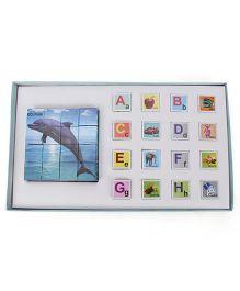 Toyenjoy Dolphin Block -Multicolor
