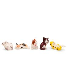 Smiles Creation Squeaky Kitty Bath Toys Multicolor - Set of 5