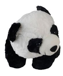 O Teddy Cute Panda Black And White - 6 Inches