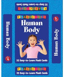 Human Body Flash Cards - 32