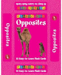 Pegasus Opposites Flash Cards - 32
